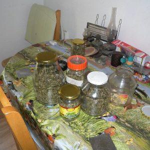 12 души, сред които и англичанин, са задържани при спец акция за наркотици в Бургас и Средец /снимки/