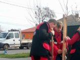 Жителите на Камено засадиха 400 дръвчета