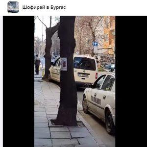 В центъра на Бургас: Такси се заби в кола и после в дърво