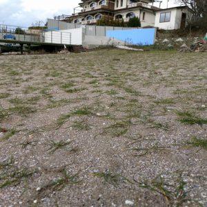 """Днес почистват затревения плаж край """"Догансарай"""""""
