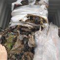 Контейнерите с италиански боклук не са токсични, но с подправени документи (снимки)