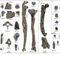 Останки от човекоподобна маймуна на 11.62 млн. год. променя представите ни за човешката еволюция